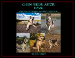 Ardennen ASTOR 12-8-16 poster FR